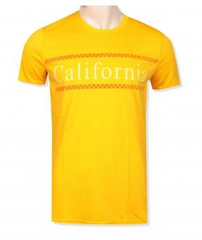 Hollister pánské tričko 1877800