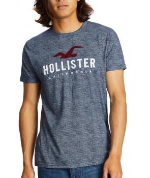 Hollister pánské tričko iconic bílé 0984099
